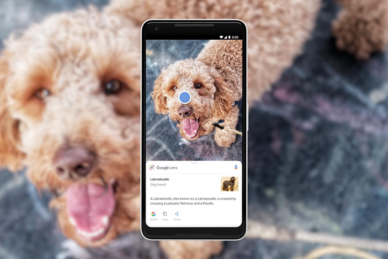 El nuevo Google Lens ha llegado al Sony Xperia XZ2 y XZ2 Compact